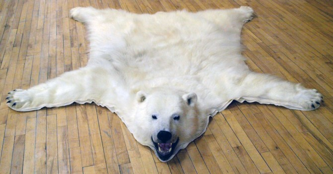 Polar Bear Rugs Home Decor