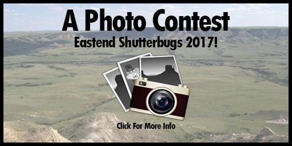 photo-contest-slider